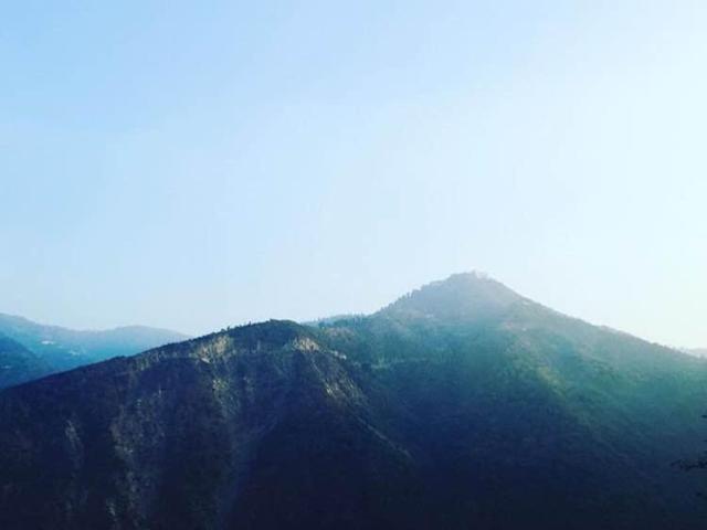 hills shimla